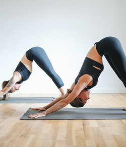 women doing yoga poses