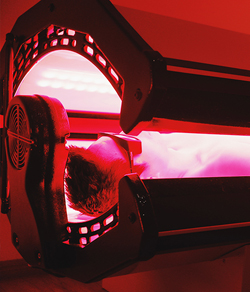 man in red light therapy bed